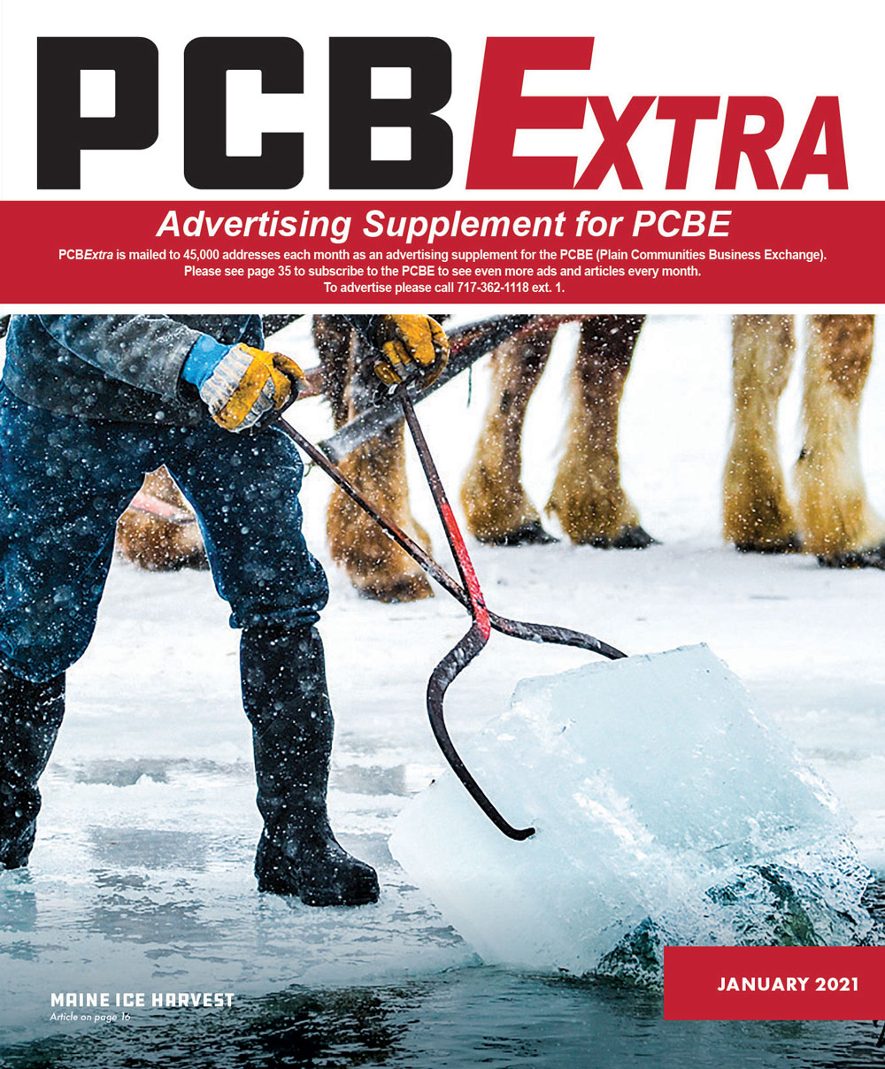 PCBExtra January 2021 cover thumbnail
